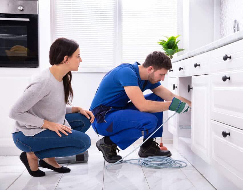 Drain Cleaner Kitchen Baltimore County
